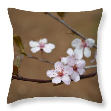 Throw Pillow featuring the photograph Cherry Blossoms by Linda Geiger