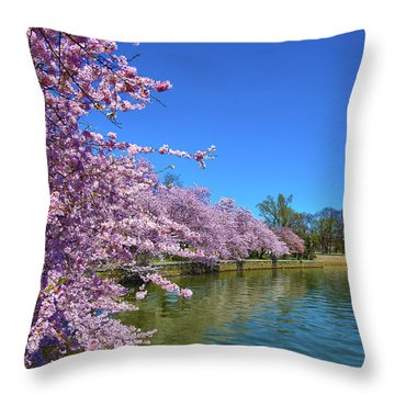 Throw Pillow featuring the photograph Cherry Blossoms by Mitch Cat