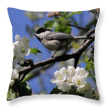Chickadee Among The Blossoms Throw Pillow