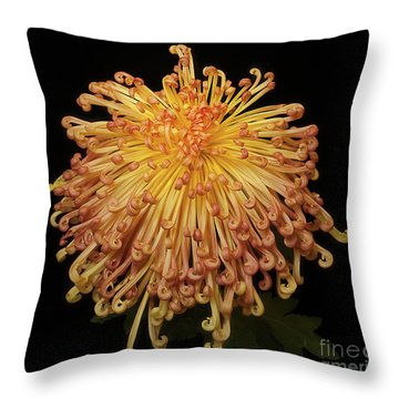 Chrysanthemum Throw Pillow