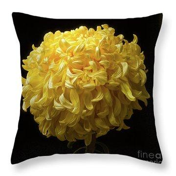 Chrysanthemum 'mckinley' Throw Pillow
