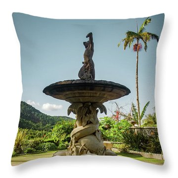 Throw Pillow featuring the photograph Classic Fountain by Carlos Caetano