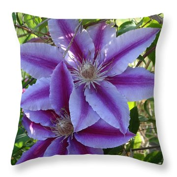 Clematis Petals Throw Pillow