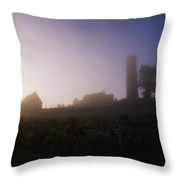 Clonmacnoise Monastery, County Offaly Throw Pillow by The Irish Image Collection