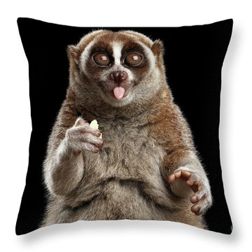 Close-up Lemur Slow Loris Isolated Black Background Throw Pillow