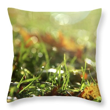Close-up Of Dry Leaves On Grass, In A Sunny, Humid Autumn Morning Throw Pillow