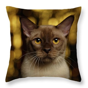 Throw Pillow featuring the photograph Closeup Portrait Burmese Cat On Happy New Year Background by Sergey Taran