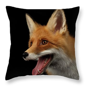 Closeup Portrait Of Smiled Red Fox Isolated On Black  Throw Pillow