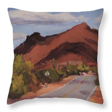 Cloud Shadows On Black Mountain Throw Pillow