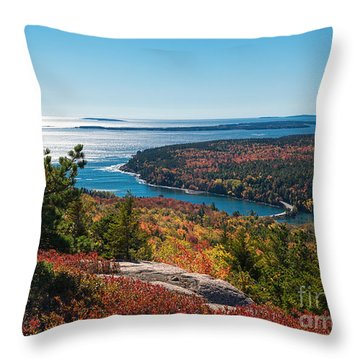 Coastline Color Throw Pillow