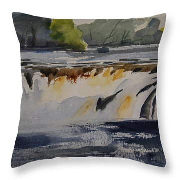 Cohoes Falls Study 2 Throw Pillow