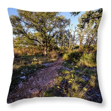 Colorado Bend State Park Gorman Falls Trail #2 Throw Pillow by Micah Goff