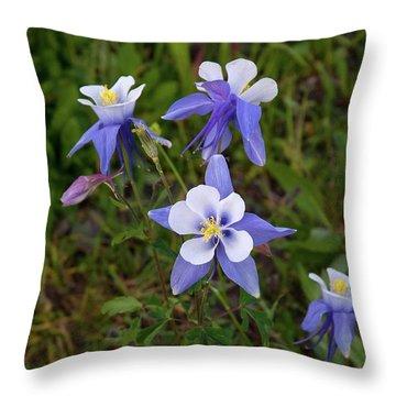 Throw Pillow featuring the photograph Colorado Columbine by Steve Stuller