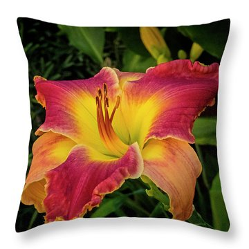 Colorful Lily  Throw Pillow