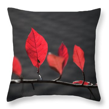 Colorful Tree Leaves Changing Color For Auyumn,fall Season In Oc Throw Pillow