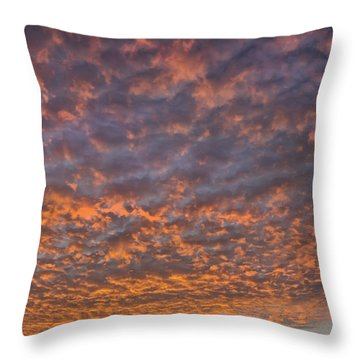 Throw Pillow featuring the photograph Colorful by Wanda Krack