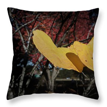Colors Of Fall Throw Pillow by Joseph G Holland