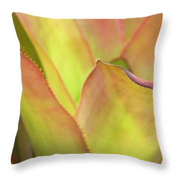 Throw Pillow featuring the photograph Colors Of Nature by Julie Palencia