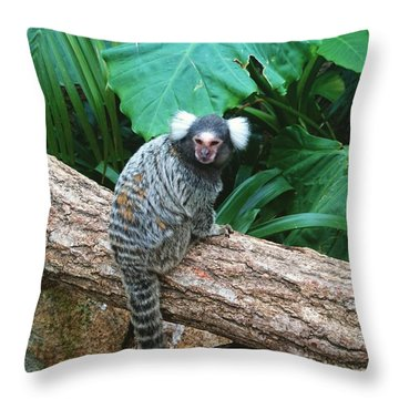 Commonmarmoset  Throw Pillow