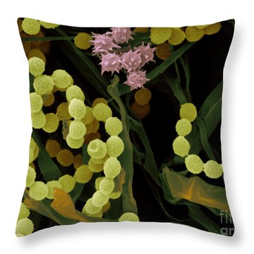 Composting Leaves Throw Pillow