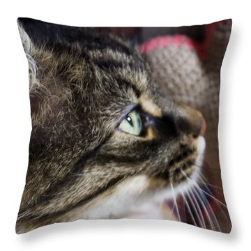 Concentration Throw Pillow by Rhonda McDougall