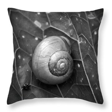 Throw Pillow featuring the photograph Conch by Jouko Lehto