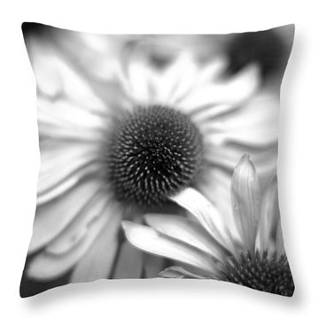 Cone Flower 7 Throw Pillow