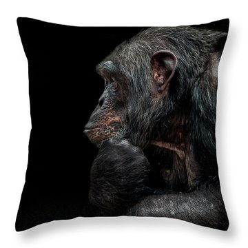 Contemplation  Throw Pillow by Paul Neville