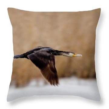 Cormorant In Flight Throw Pillow
