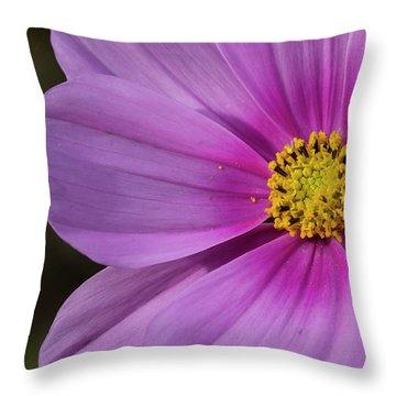 Throw Pillow featuring the photograph Cosmos by Elvira Butler