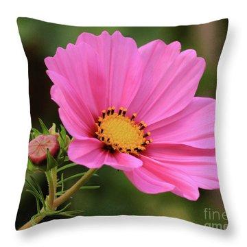 Cosmos Throw Pillow