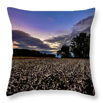 Cotton Patch  Throw Pillow