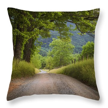 Country Lane In The Smokies Throw Pillow