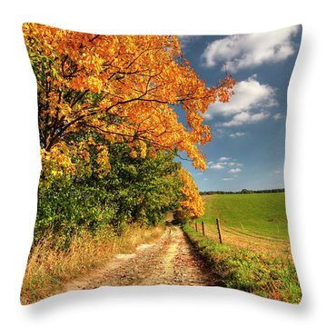 Country Road And Autumn Landscape Throw Pillow by Michal Boubin