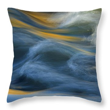 Crash Of Color Throw Pillow by Sue Cullumber