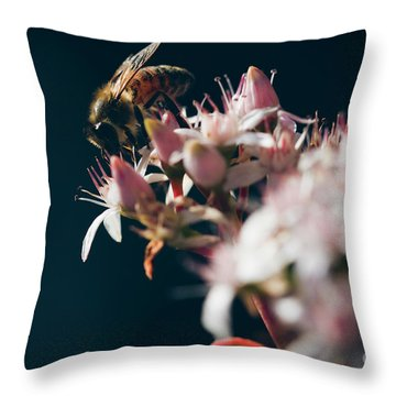 Throw Pillow featuring the photograph Crassula Ovata Flowers And Honey Bee  by Sharon Mau