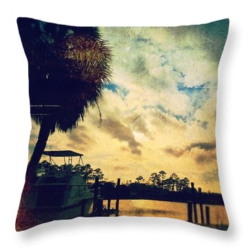 Created With  Throw Pillow by Joan McCool