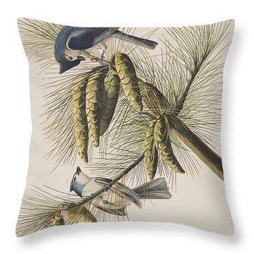 Crested Titmouse Throw Pillow