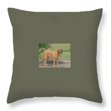 Cujo At The Park Throw Pillow by Val Oconnor