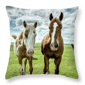 Throw Pillow featuring the photograph Curious Friends by Kristal Kraft