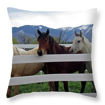 Throw Pillow featuring the photograph Curious Yearlings by Juls Adams
