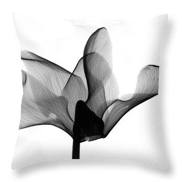 Cyclamen Flower X-ray Throw Pillow