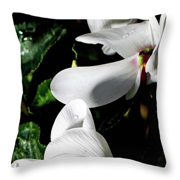 Throw Pillow featuring the photograph Cyclamen by Mindy Newman