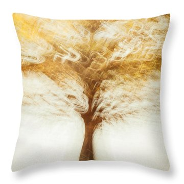 Cypress In Autumn Throw Pillow by Iris Greenwell
