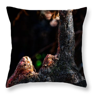 Cypress Knees Throw Pillow by Christopher Holmes