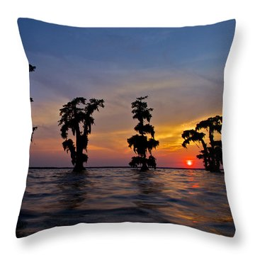 Throw Pillow featuring the photograph Cypress Trees by Evgeny Vasenev