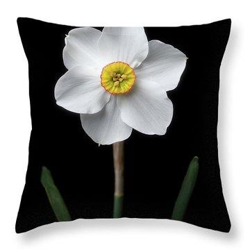 Daffodil 'cantabile' Throw Pillow