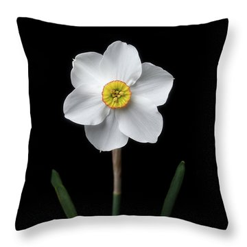 Daffodil 'cantabile' Throw Pillow
