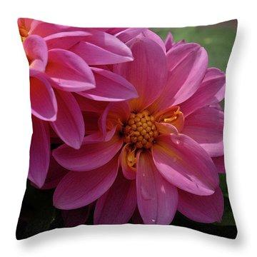 Dahlia Beauty Throw Pillow