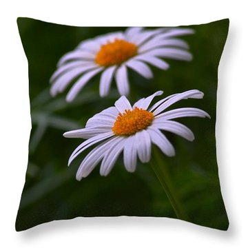 Daisies Throw Pillow by Tim Good